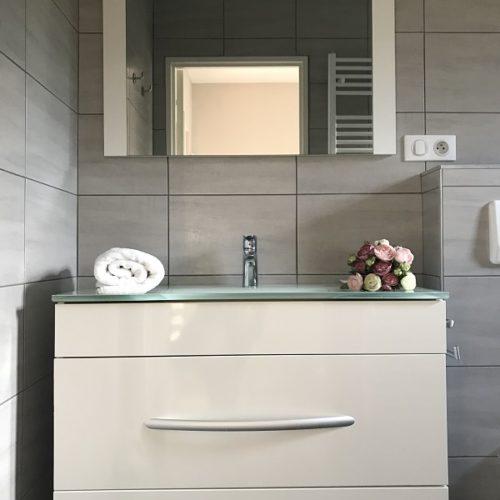 curiste appartement luxeuil les bains